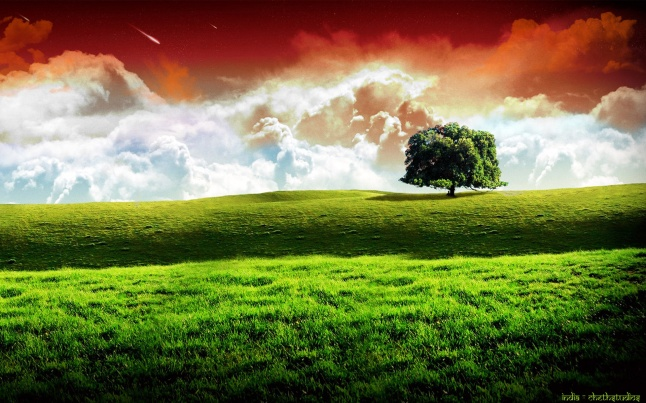 india_republic_day_hd_widescreen_wallpaper-wide